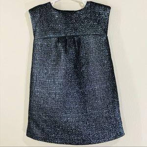 Gap Girls Gray And Metallic Silver Dress 3 Year 3T